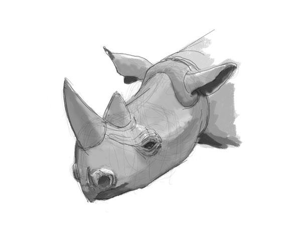 Inkling_RhinoHead_study