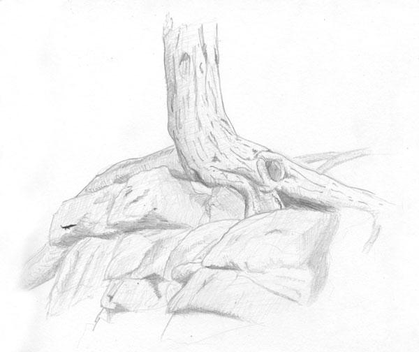 TreeStudy_lvls_600